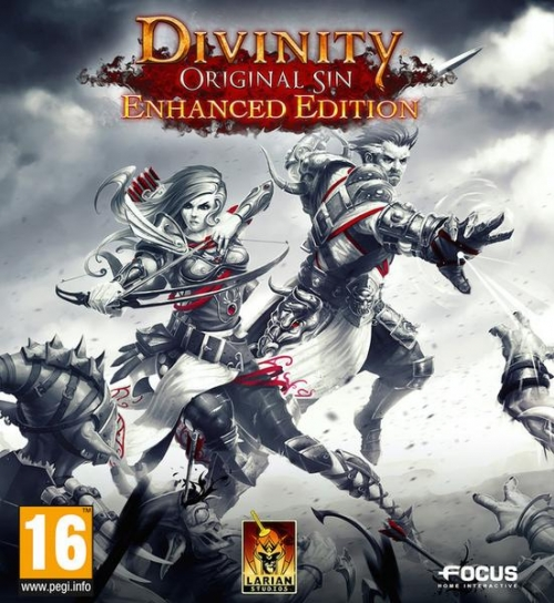 Divinity: Original Sin - Enhanced Edition (2015) PC