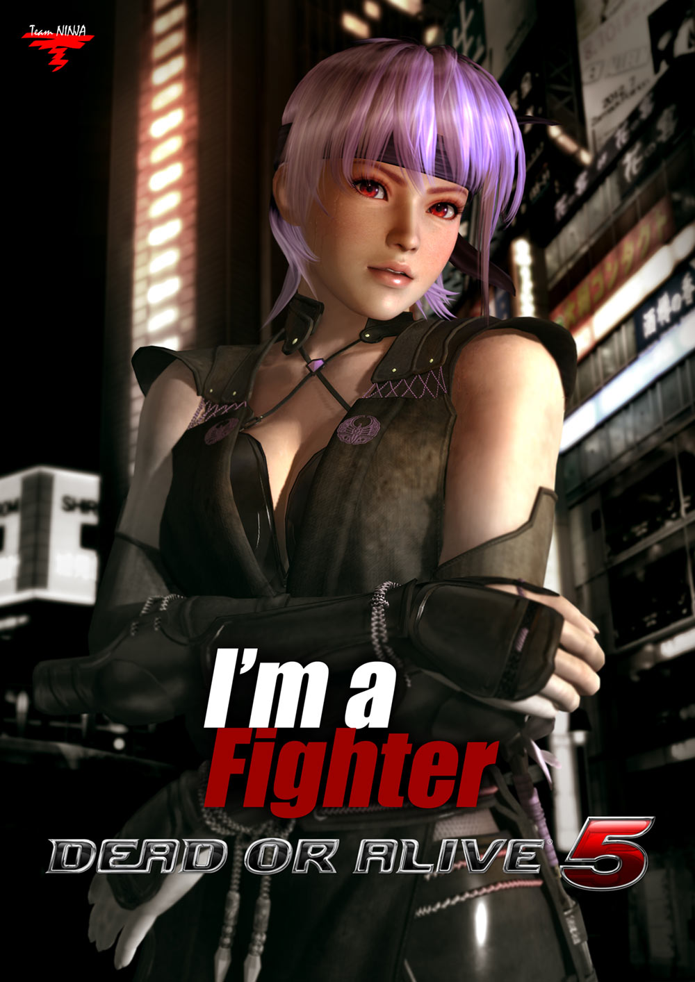 Dead or Alive 5: Last Round [v 1.0.4 + 14 DLC] PC