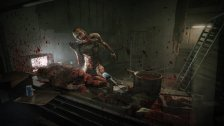 Outlast: Whistleblower (2014, RUS|ENG) RePack
